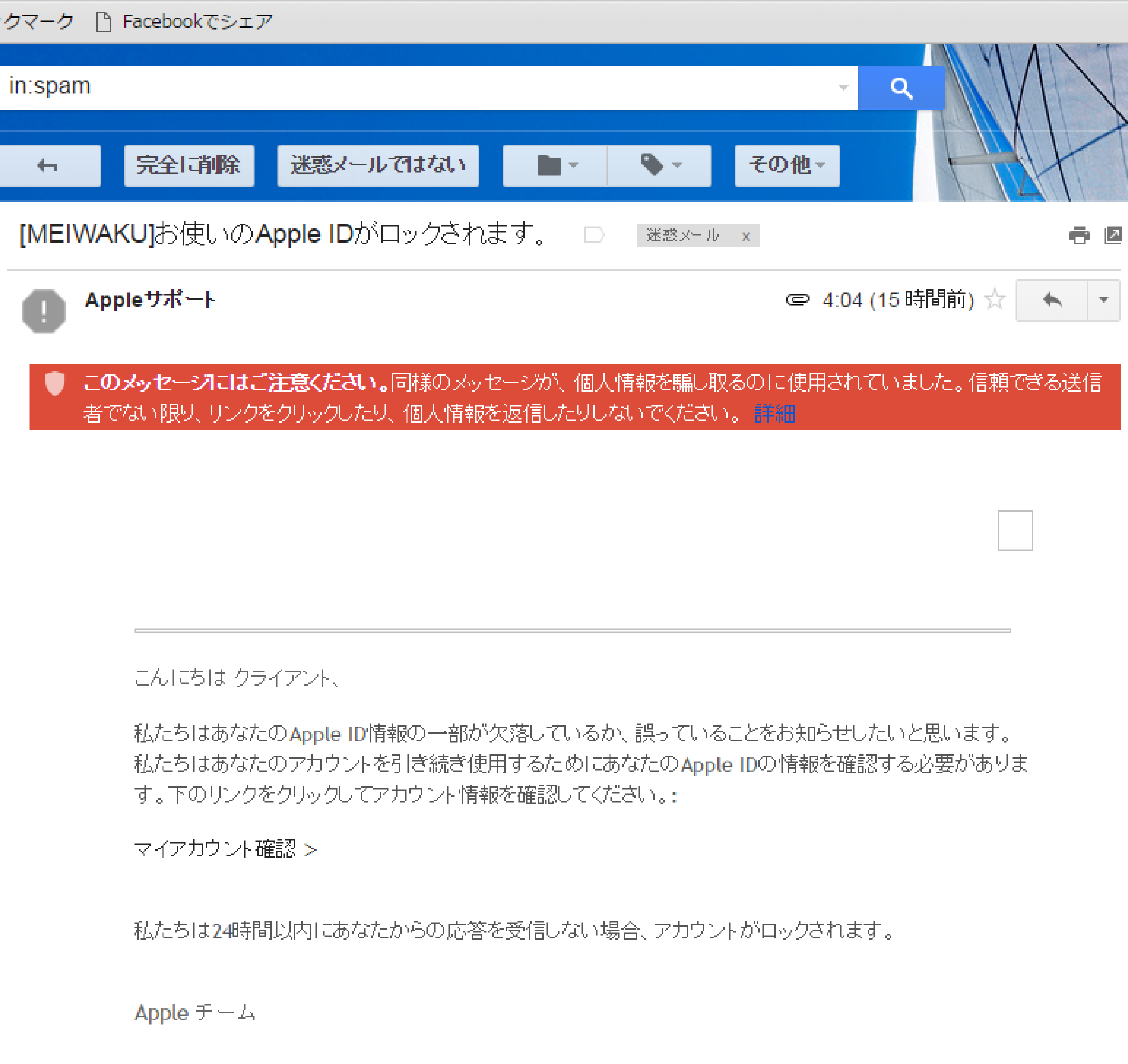 ipad迷惑メール (2)