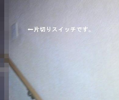 img_001318.jpg
